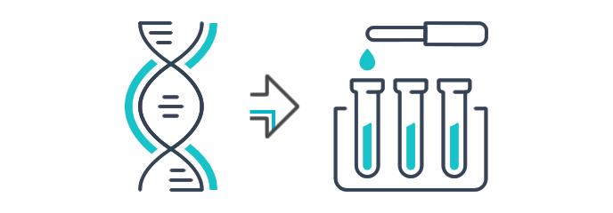 Sentinel ha esperienza nella liofilizzazione di PCR master mix? Timelines: Lyophilization